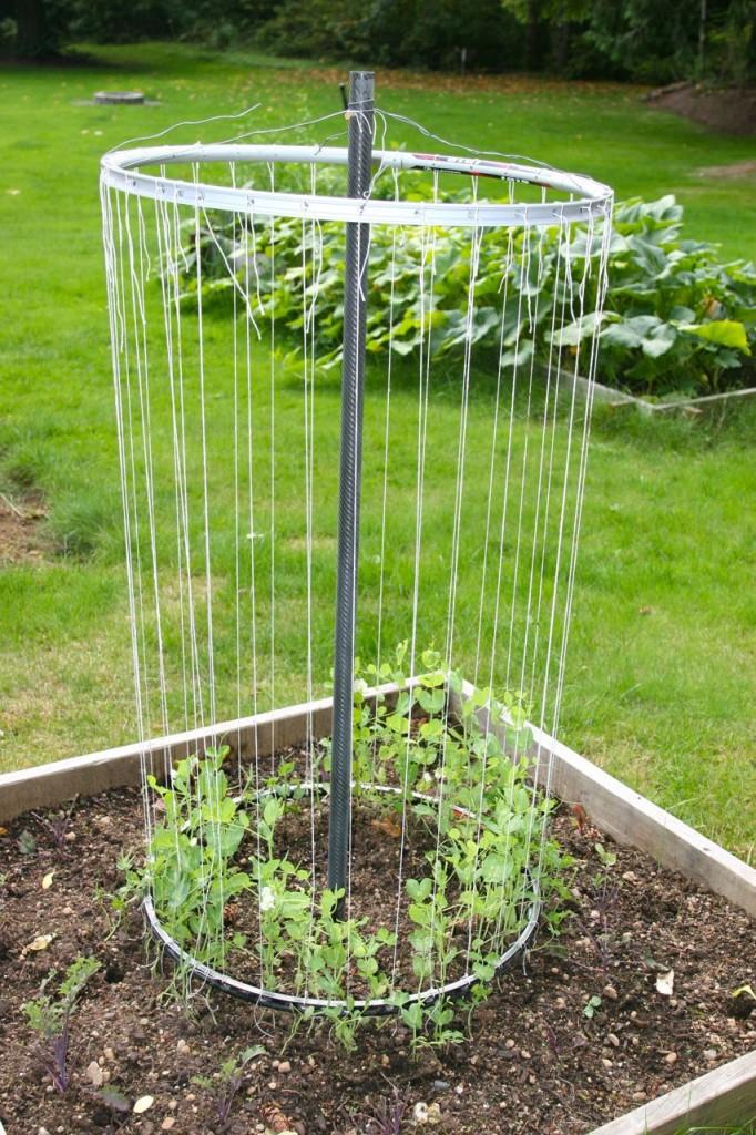 Интересные идеи для сада